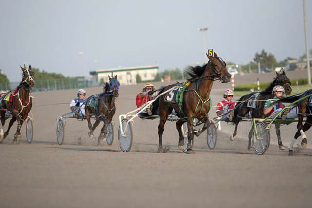 Harness racing at Yonkers Raceway.