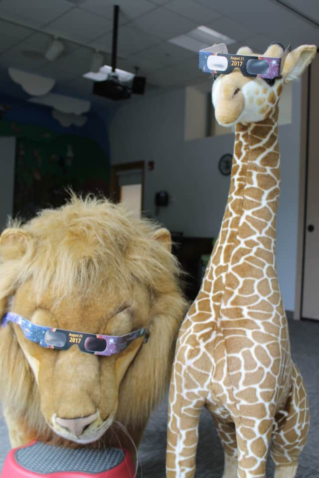 Even Wilton Library's animals are getting into swing of things in preparation for the Eclipse Viewing Party being held on Monday, Aug. 21, from 1 to 4:30 p.m. at the library.