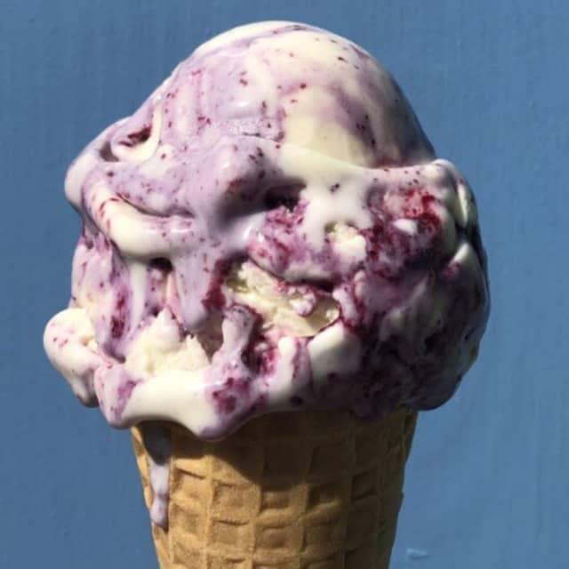 Blueberry ice cream heaven.