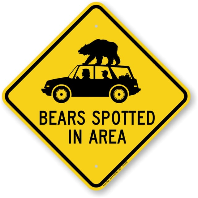 A bear was spotted in Ridgefield.