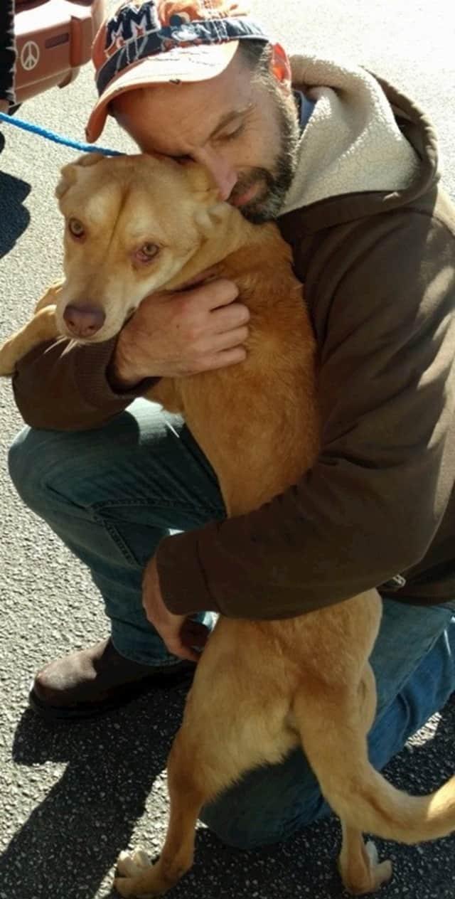 "Steve Quilliam of Fair Lawn shows love to a ""Grateful Doggie."""