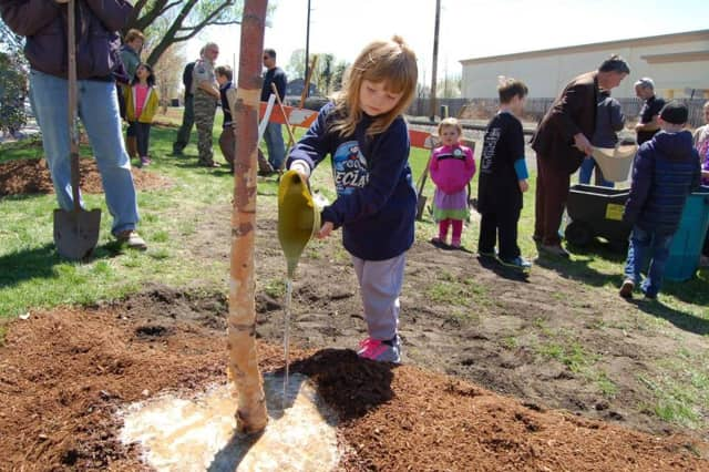 A little one helps with tree planting last spring.