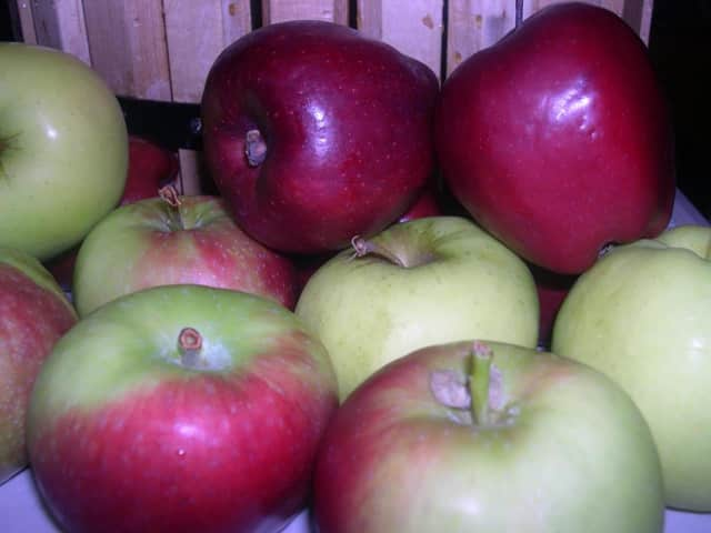 Learn how to make apple cider Sunday at the Tenafly Nature Center.