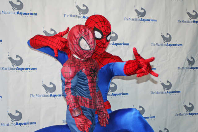 The Maritime Aquarium will welcome Spider-Man for the Aqua-Scarium on Halloween.