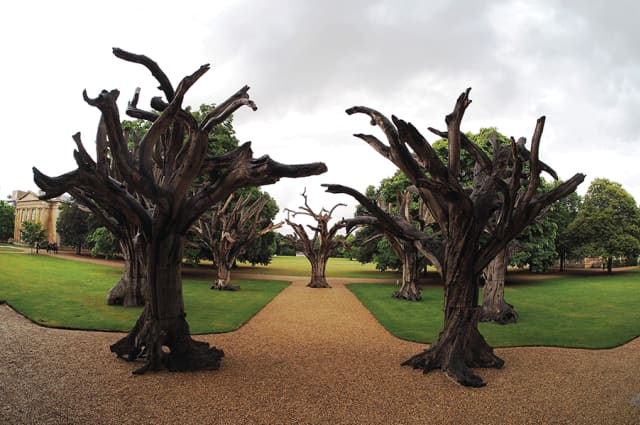"Ai Weiwei's ""Trees"" (2010) was installed at Downing College, Cambridge University last year."
