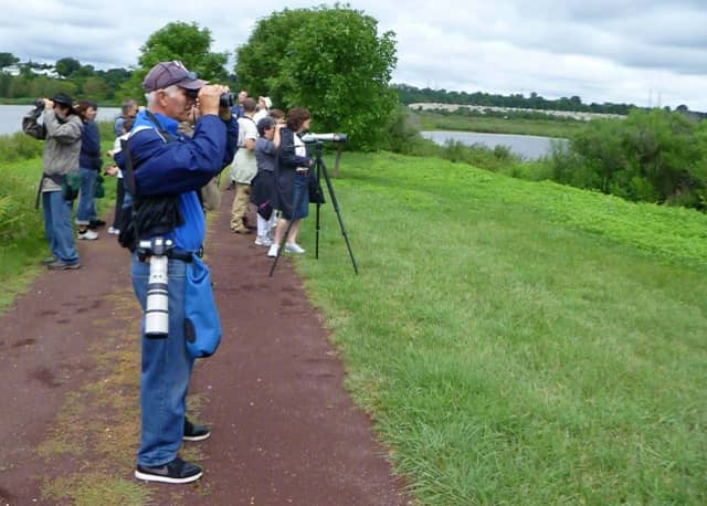 The Bergen County Audubon Society will lead a bird walk open to the public Sunday at Flat Rock Brook Nature Center, beginning at 9:30 a.m.