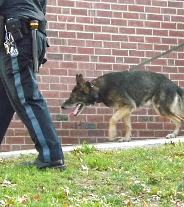 Bergen County Sheriff's K-9 units will be on roving patrol.