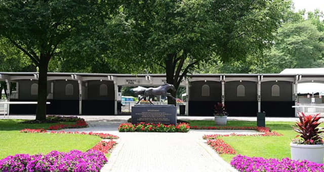 The Belmont Stakes will be held at a later date, without fans.