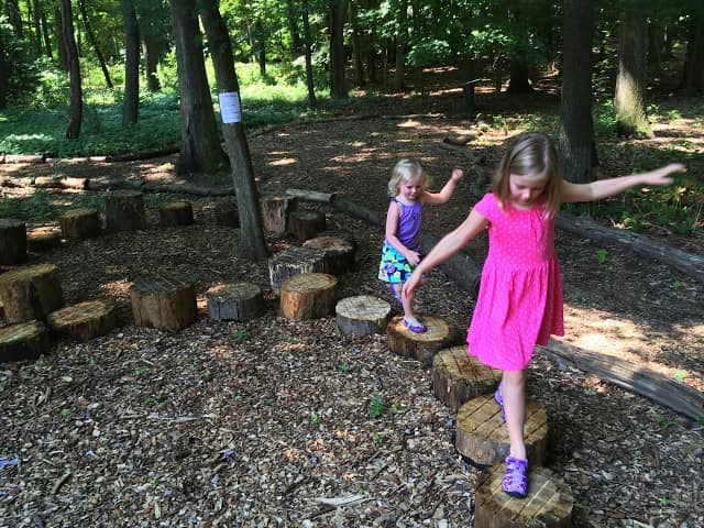 """At the Darien Community Association """"Mom's Morning In"""" program, participants will take a nature walk through the association's bird sanctuary April 22."""