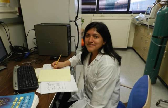 Peekskill High School's Brittney Pauta spent her summer working with researchers at the New York Medical College.