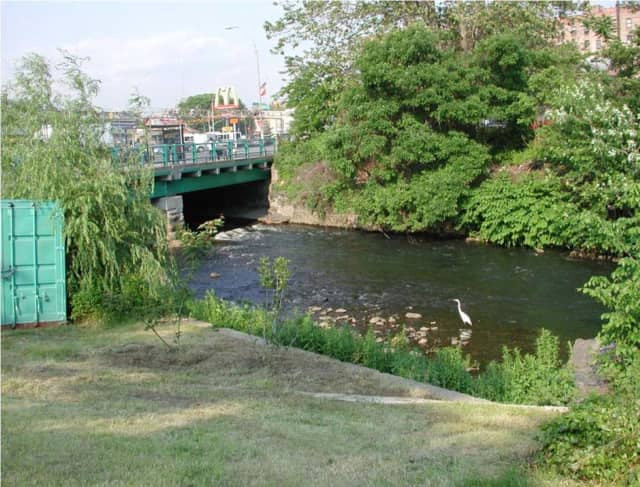The Bronx River Alliance will coordinate watershed management efforts for the Bronx River using a grant from the Westchester Community Foundation.