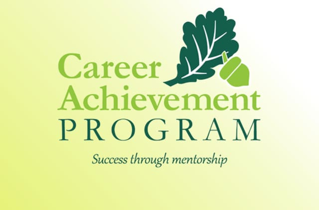 The Dutchess County Chamber of Commerce, Chamber Foundation, is looking for volunteers to serve as mentors in their Career Achievement Program.