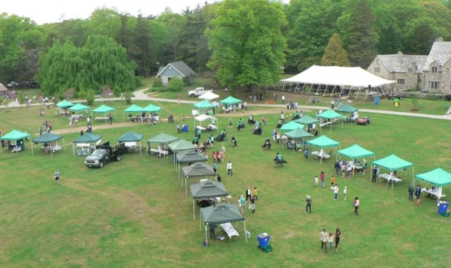 An aerial view of Cranbury Park showing the lineup of exhibitors at the Connecticut Tree Festival.
