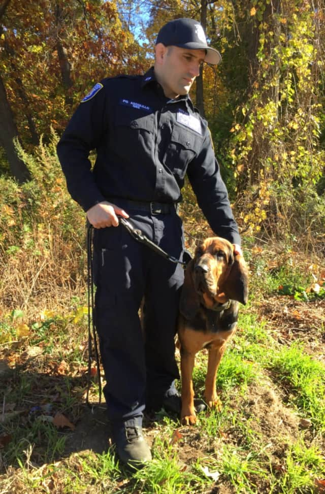 Cali and Police Officer Robert Ascolillo were able to swiftly track down a missing man in Yonkers on Friday.