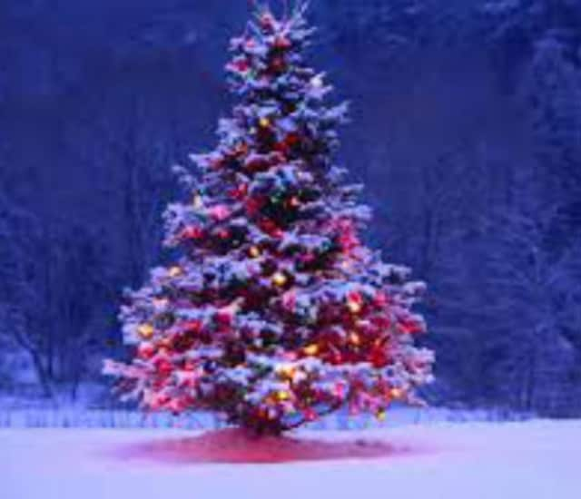 Demarest's tree lighting will take place on Dec. 8.