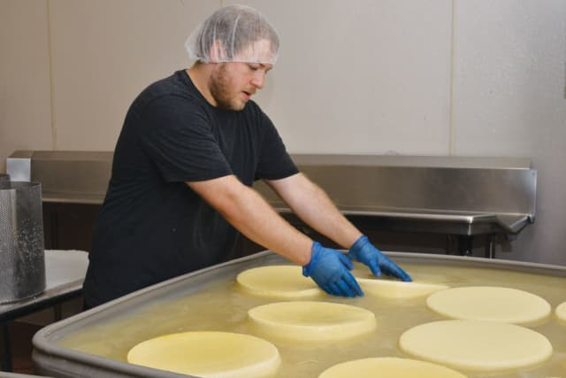 Curtis West, Sprout Creek Farm's creamery manager, adjusts cheese wheels in a brine bath.
