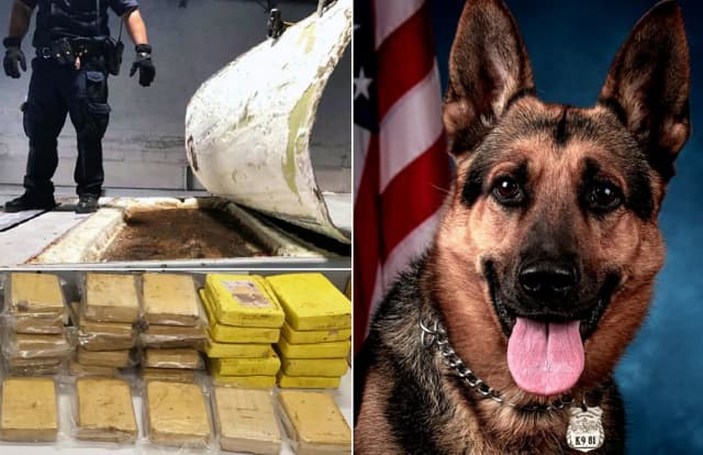 The compartment, the K9 (Balu) and the coke.