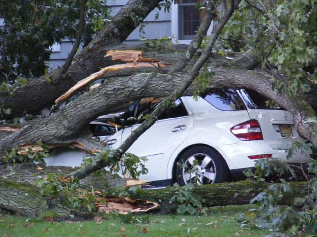 A Mercedes Benz SUV was among the three Ridgewood vehicles wrecked by a falling tree Thursday.