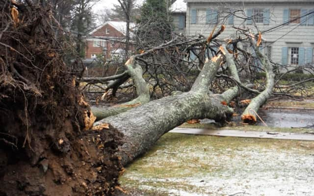 Tens of thousands of Dutchess County residents are without power as Central Hudson crews battle the aftermath of the Nor'easter.
