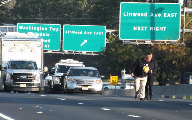 The victim tried to cross Route 17 near the Linwood Avenue in Paramus when he was struck, authorities said.
