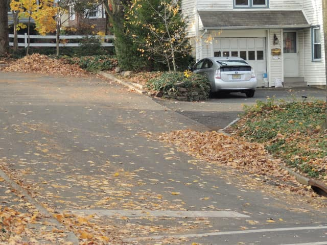 Starting Dec. 20, Demarest residents will have to start bagging their leaves for pick-up.
