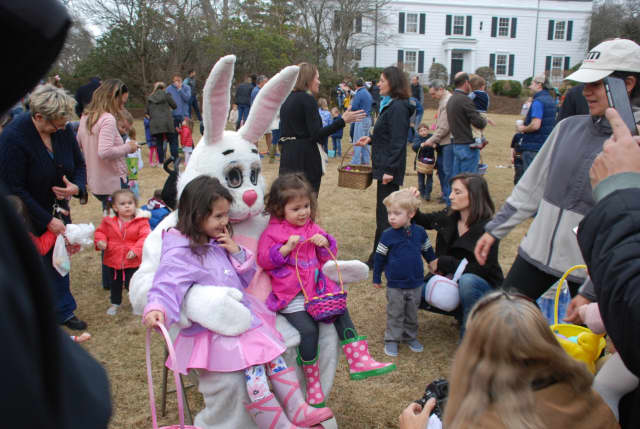 Join the Easter Bunny at the DCA Easter Egg Hunt on the Great Lawn Friday at 10 a.m.