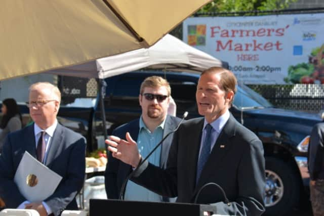 Sen. Richard Blumenthal will hold a Town Hall-style meeting Saturday in Danbury.
