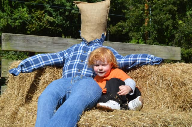 The Pompton Lakes Business Improvement District will have a scarecrow-making contest on Oct. 8.