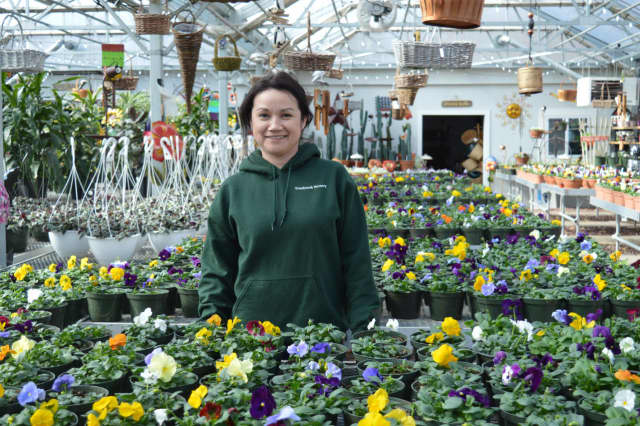 Paula Scott shows off the pansies at Twinbrook Nursery in Franklin Lakes.