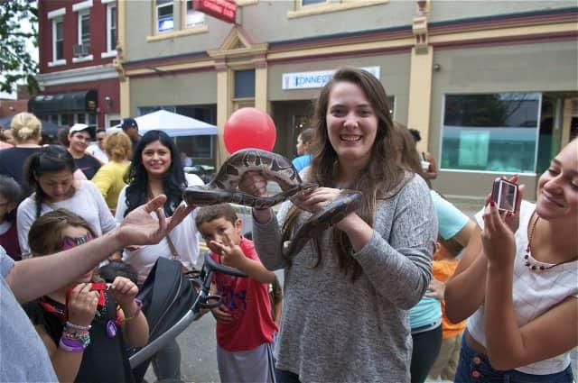 A girl handles a boa constrictor at Saturday's Taste of Danbury festival. A boa constrictor was found Saturday in Darien.