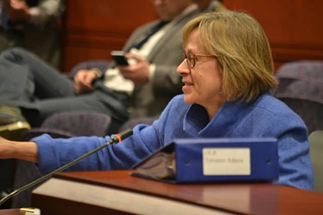 State Rep. Terrie Wood has introduced legislation that would allow the number of polling locations during the primaries to be reduced.