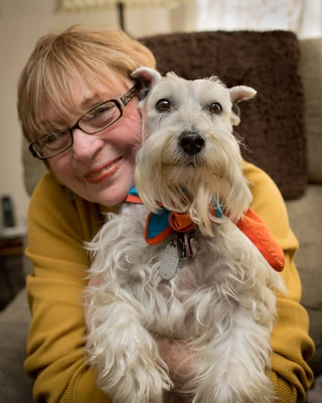 Ava, a schnauzer, provides therapy in special-needs settings, often with children on the autism spectrum.