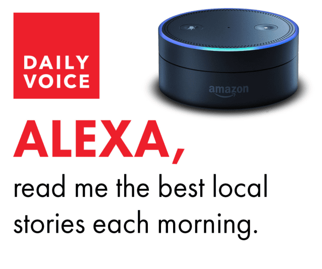 Add Daily Voice to your Alexa Flash Briefing.