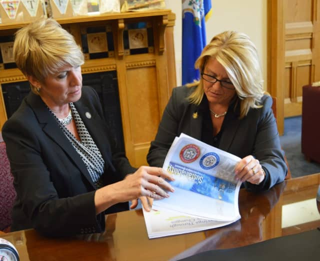 State Reps. Laura Devlin and Brenda Kupchick have new committee assignments for the new year.