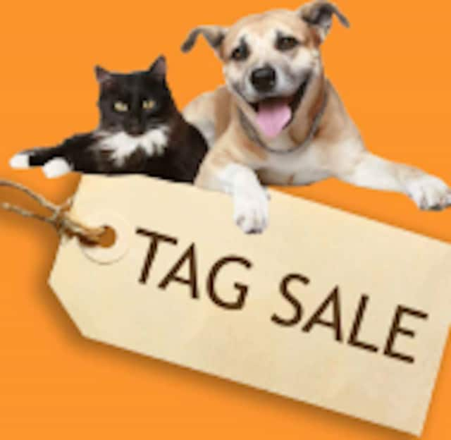 The Danbury Animal Welfare Society will hold their annual tag sale on Saturday June 11 and Sunday, June 12 in Bethel.