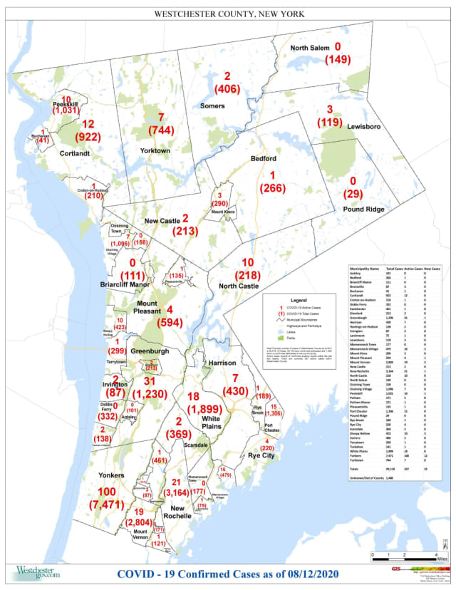The breakdown of COVID-19 cases in Westchester as of Wednesday, Aug. 12.