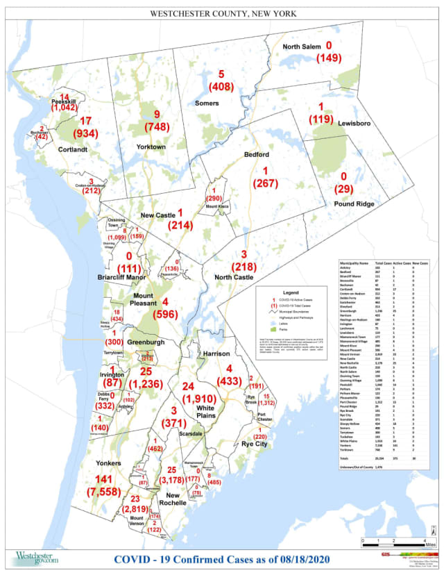The breakdown of COVID-19 cases in Westchester as of Tuesday, Aug. 18.