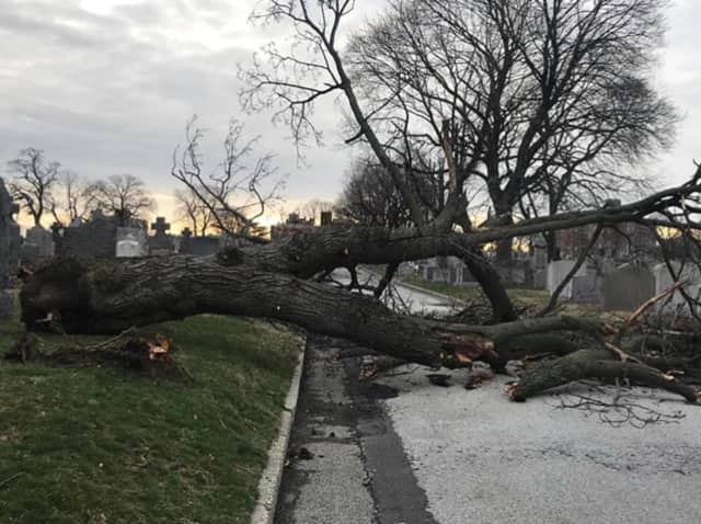 The recent rash of Nor'easters devastated the Hudson Valley.