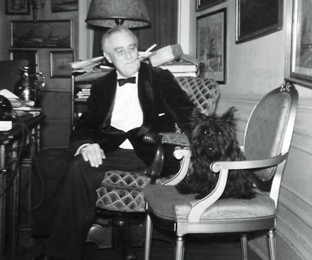 Fala with President Franklin D. Roosevelt in the White House Study, Dec. 20, 1941. Courtesy Franklin D. Roosevelt Presidential Library and Museum.