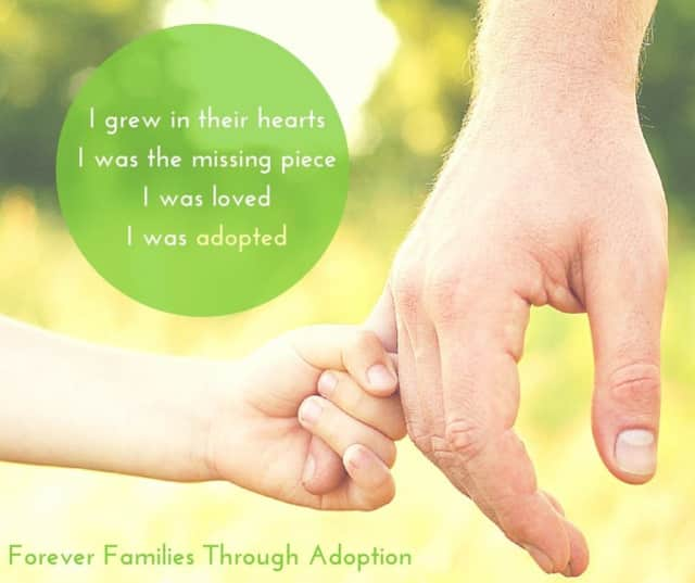 Learn all about the adoption process at the Port Chester-Rye Brook Library on Monday, Dec. 7 from 6:30 - 8 p.m.