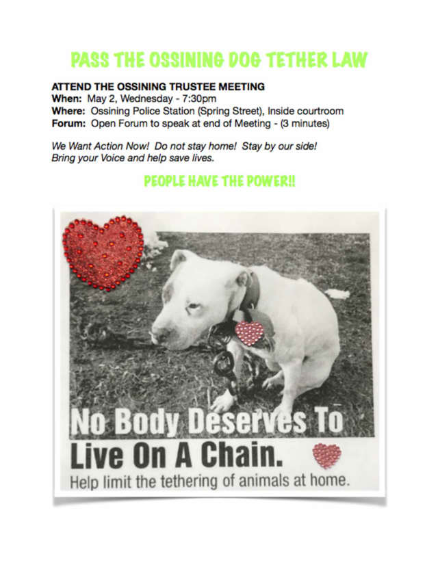 "A flyer being circulated in the Ossining area promoting a ""tether law"" that would bar neglect of pets."