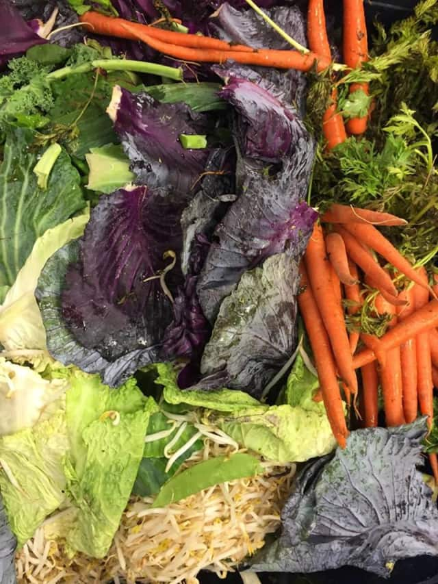 All food scraps, including but not limited to meat, dairy, fish, fruit, vegetables, bread, pasta, cooked food, leftover food, etc., will be accepted.