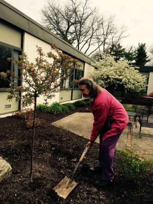 Coriam plants a tree.