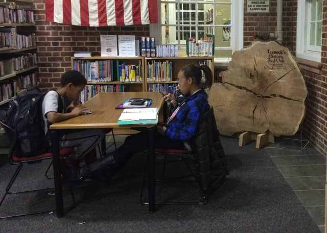 A piece of a historic red oak tree sits in the corner of the Teaneck Public Library.