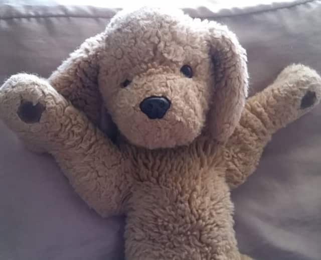 Children are encouraged to bring stuffed animals for story time and a sleepover at the Emerson Public Library.