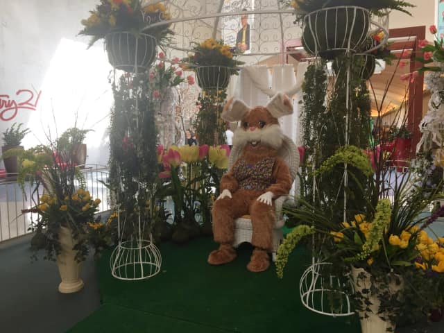 The Easter Bunny is available for photos at Bergen Town Center.