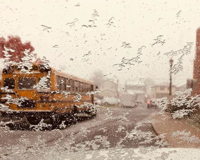 Many schools are closed following Thursday's storm.