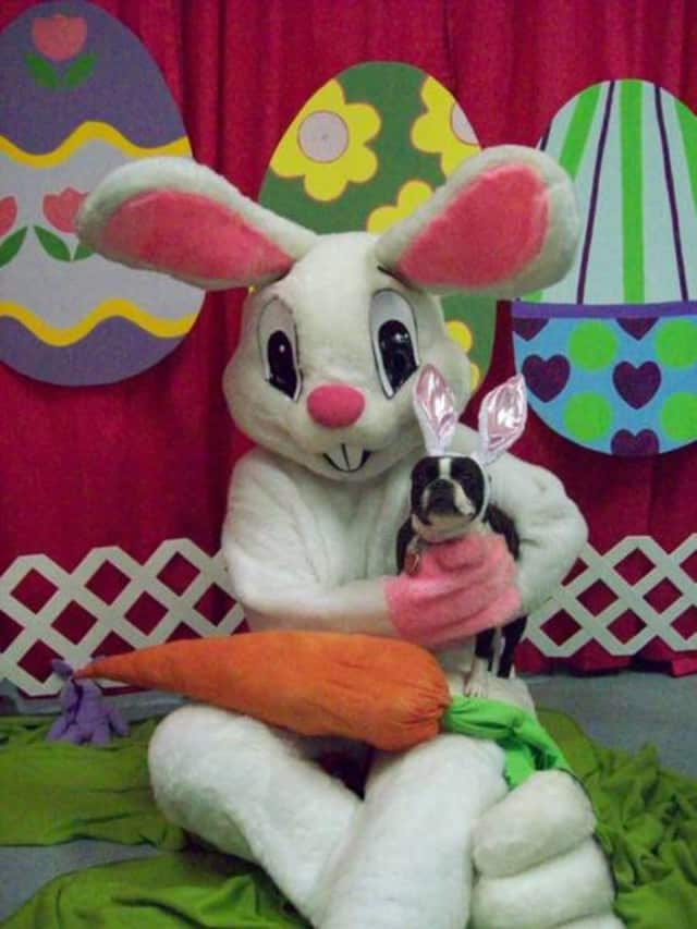 The Allendale Bar & Grill is hosting breakfast with the Easter Bunny March 26.