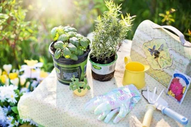 Join Master Gardener Chris Ferrero as she teaches a program on how to use and grow 12 easy herbs at the Howard Public Library on Wednesday, June 15 at 2 p.m.