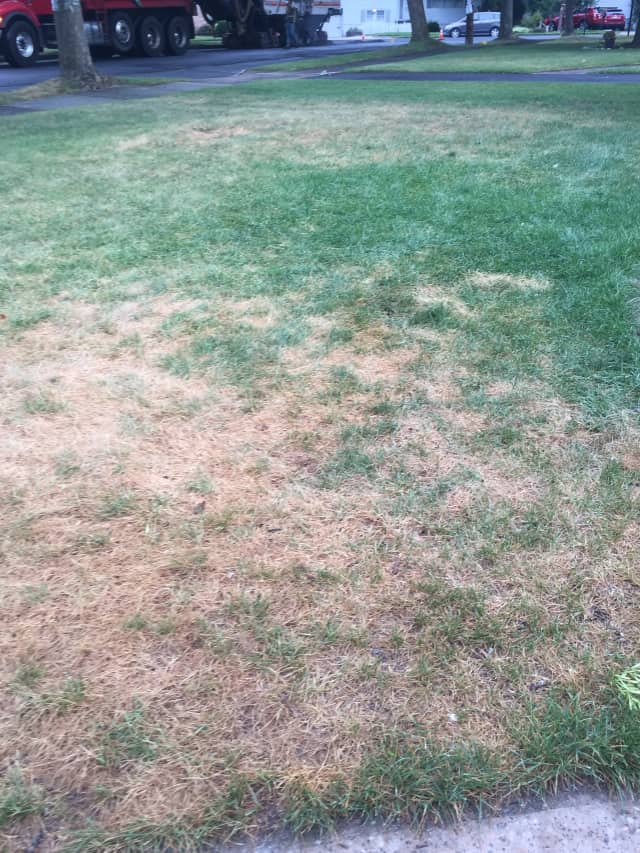 Ridgewood homeowners have to follow the village's restrictions for watering their lawns.